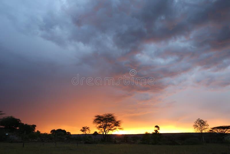 Zonsondergang in Afrika stock foto