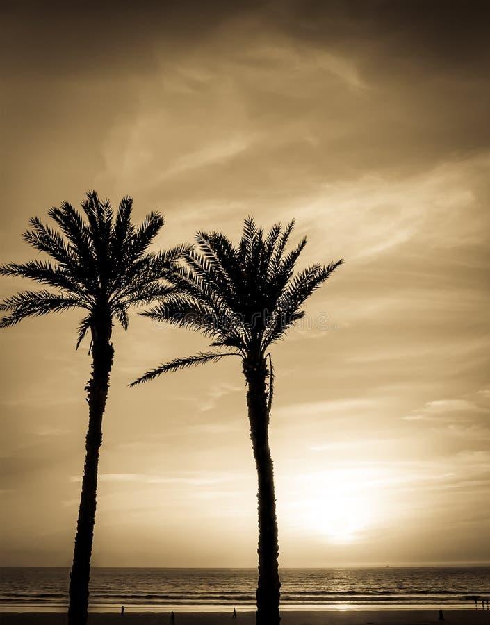 Zonsondergang in Agadir, Marokko royalty-vrije stock fotografie