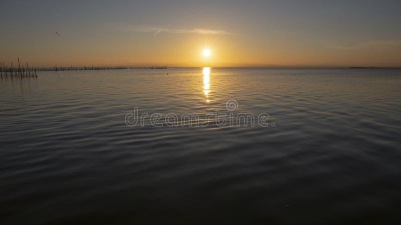 Zonsondergang in Albufera van Valencia stock afbeeldingen