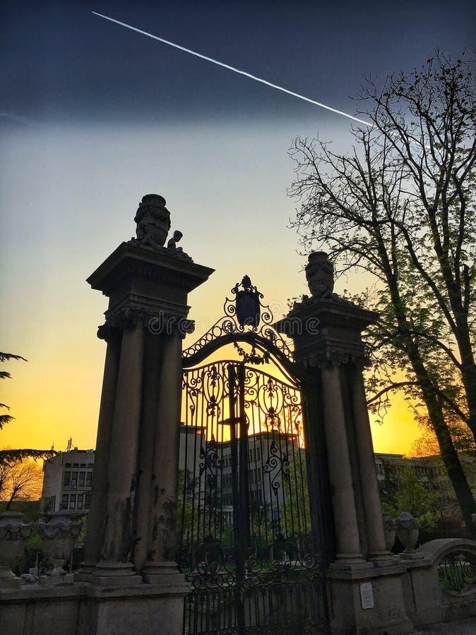Zonsondergang in Belgrado royalty-vrije stock foto