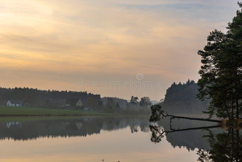 Zonsondergang, bezinning van het bos in het meer stock fotografie
