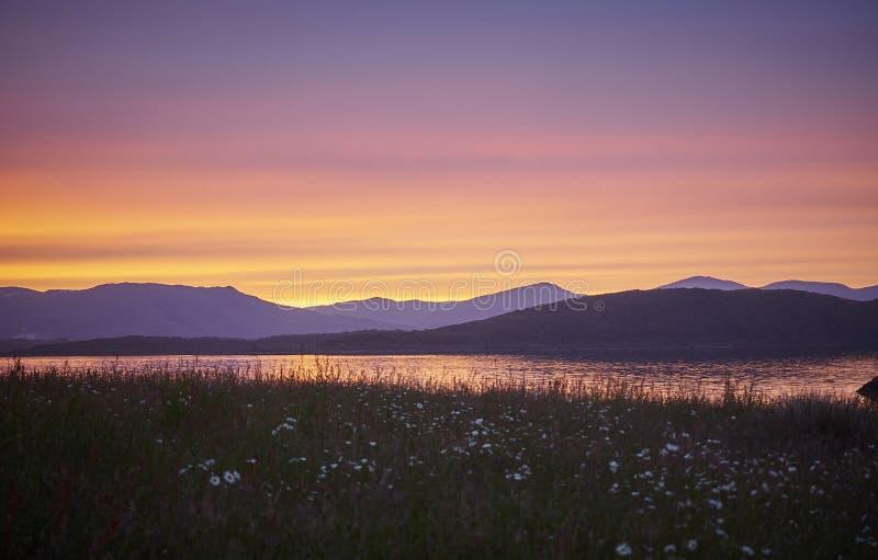 Zonsondergang bij Dunstaffage-baai Argyle Scotland Daisies in de voorgrond stock afbeeldingen