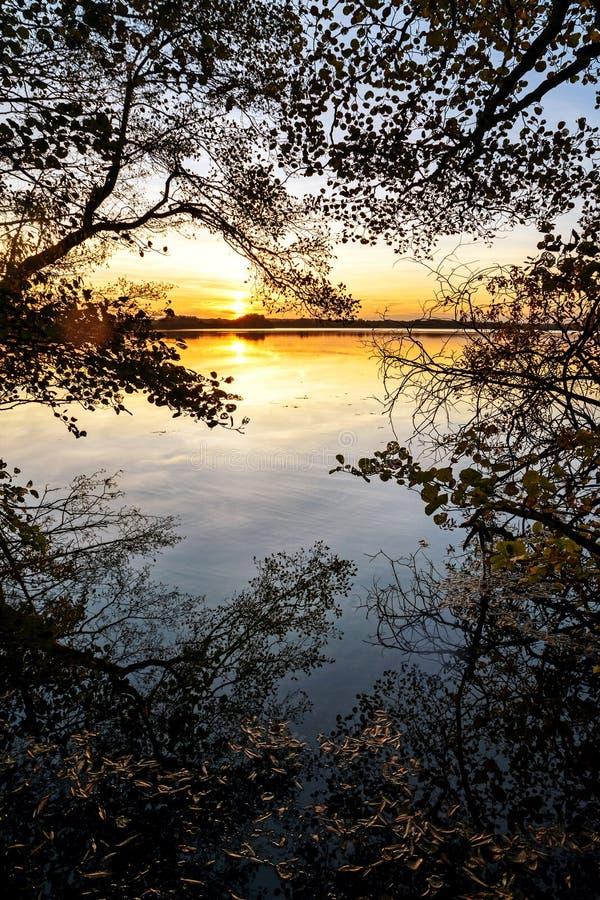 Zonsondergang bij het meer, mening van de bosrand met bezinningen a royalty-vrije stock afbeeldingen