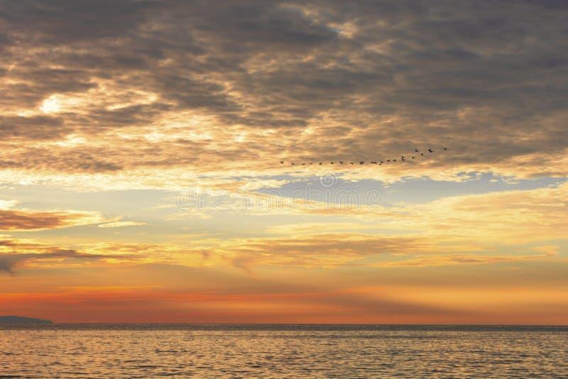 Zonsondergang bij het overzees De hemel, het overzees en een vliegende troep van vogels stock afbeelding