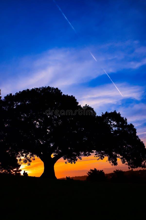 Zonsondergang bij het Park van de Waarnemingscentrumheuvel royalty-vrije stock fotografie