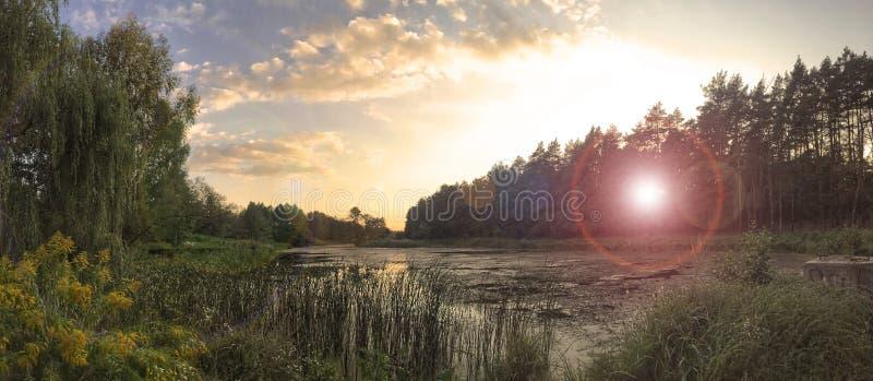 Zonsondergang bij meer door bomen wordt omringd die royalty-vrije stock foto