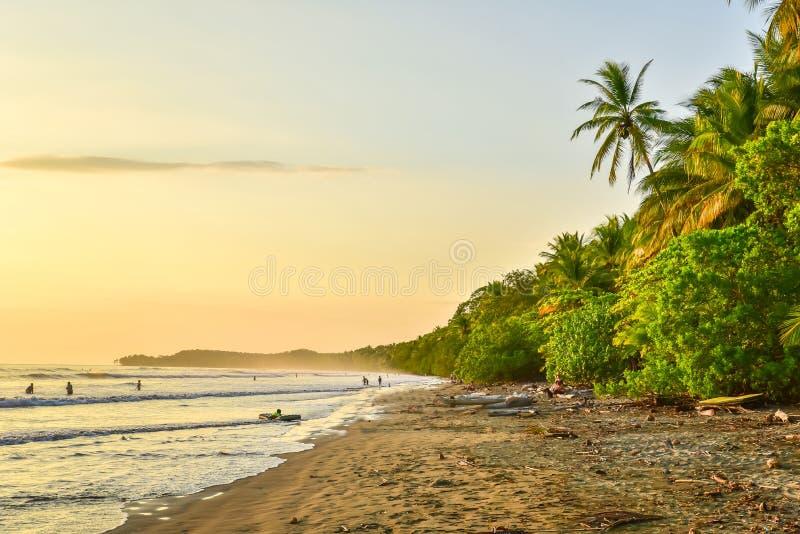 Zonsondergang bij paradijsstrand in Uvita, Costa Rica - mooie stranden en tropisch bos bij vreedzame kust van Costa Rica - reis royalty-vrije stock foto