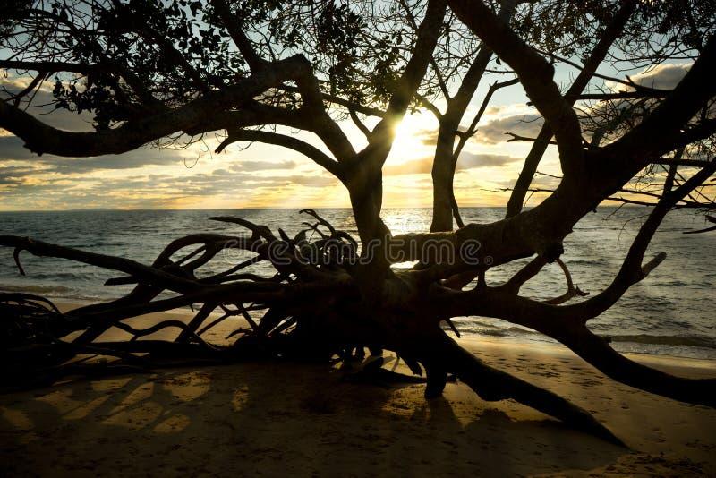 Zonsondergang bij Stradbroke-Eiland Australië stock afbeeldingen