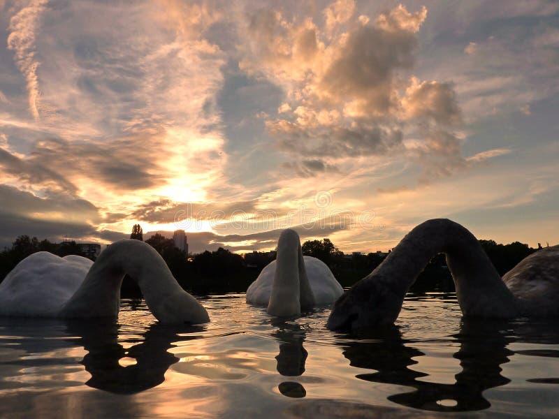 Zonsondergang bij Strkovec-meer stock fotografie