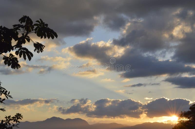 Zonsondergang in de aard tussen de bomen royalty-vrije stock foto