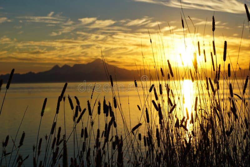 Zonsondergang in de Baai stock foto's