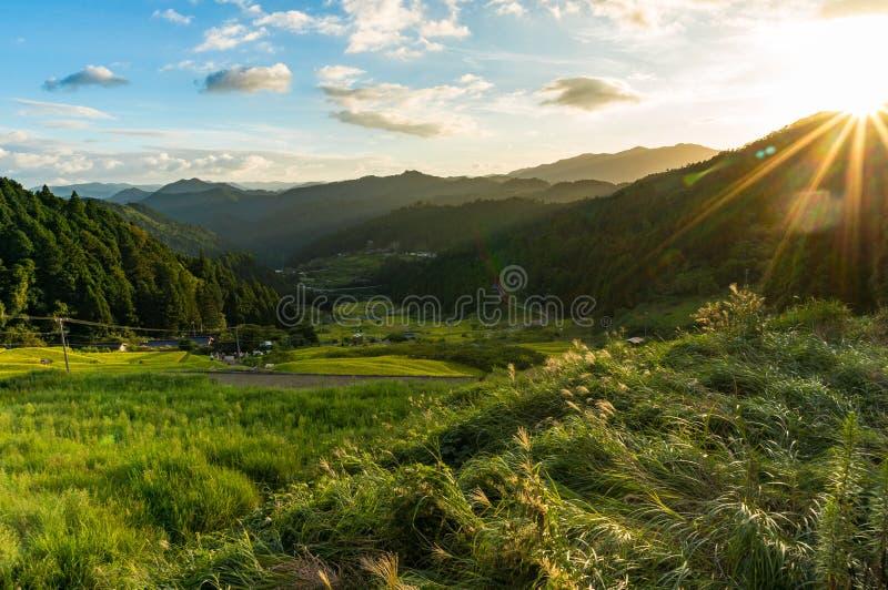 Zonsondergang in de bergen met padieveldgebieden en bos stock fotografie