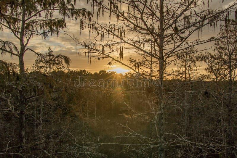 Zonsondergang in de open plekken stock afbeelding