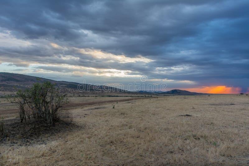Zonsondergang in de wildernis stock foto