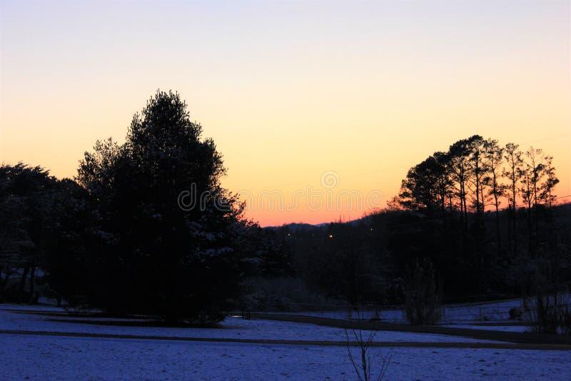 Zonsondergang in de Winter door Mooie Bomen wordt ontworpen die stock afbeelding