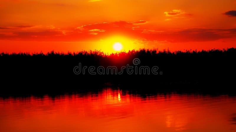Zonsondergang in Delta royalty-vrije stock foto's
