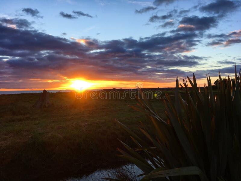 Zonsondergang dichtbij de Oceaan, Nieuw Zeeland stock foto's