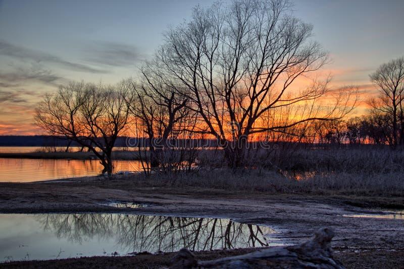 Zonsondergang door de bomen stock foto's