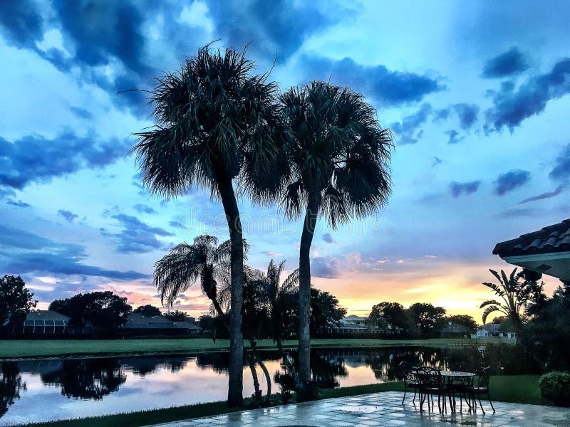 zonsondergang in een tropische achtertuin stock foto