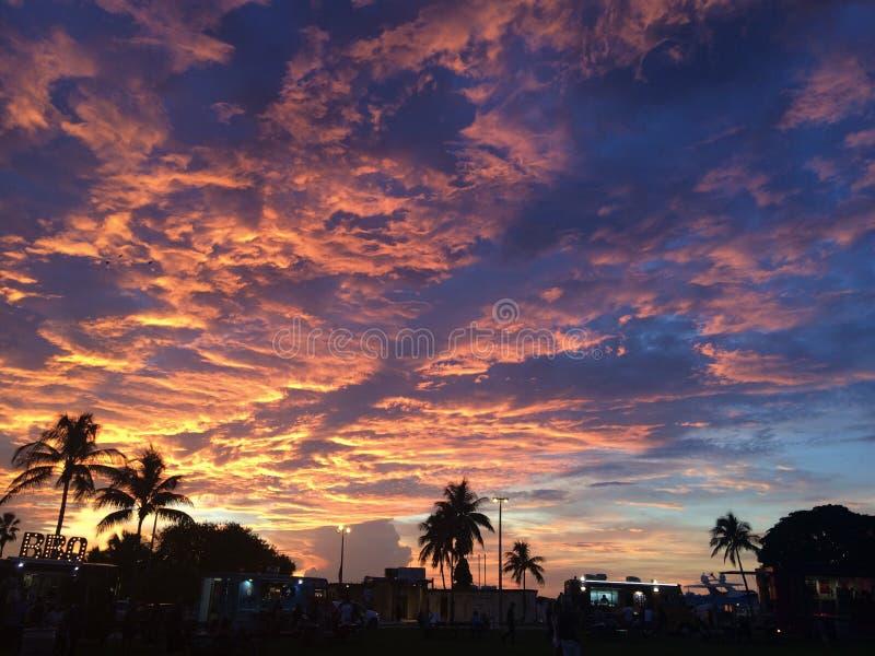 Zonsondergang en palmen royalty-vrije stock foto