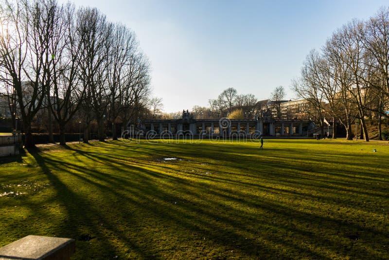 Zonsondergang en schaduwen in een park stock afbeeldingen