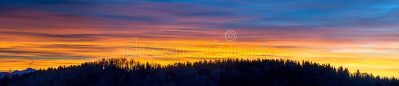 Zonsondergang en silhouet van bos royalty-vrije stock afbeelding