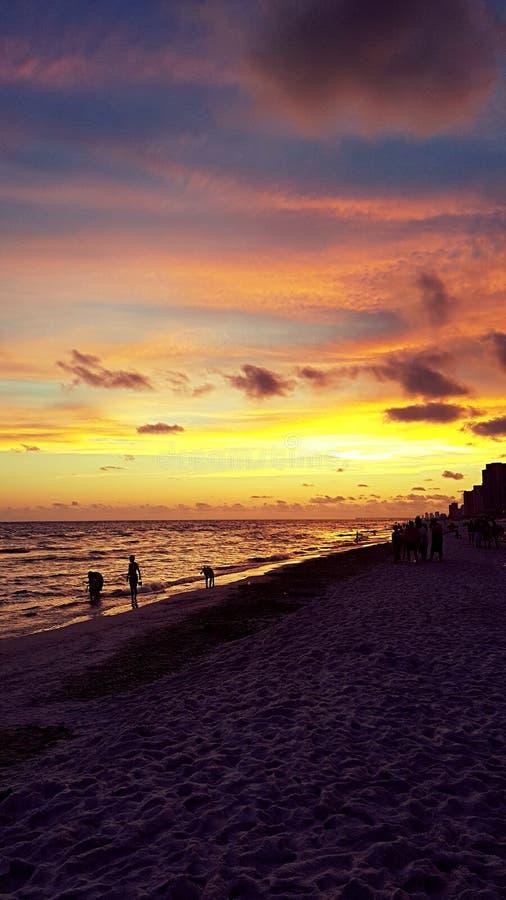Zonsondergang in Florida stock afbeeldingen