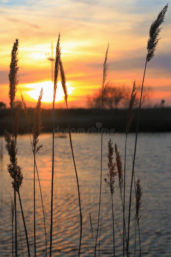Zonsondergang in Franse riviera stock foto's