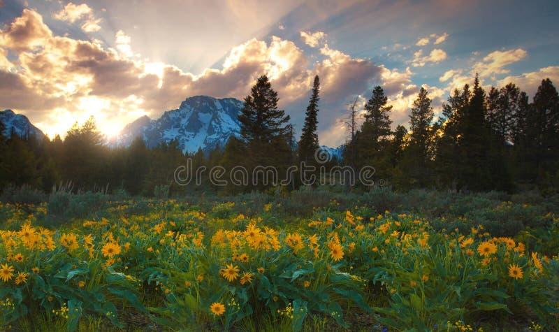 Zonsondergang in Grote Tetons royalty-vrije stock afbeeldingen
