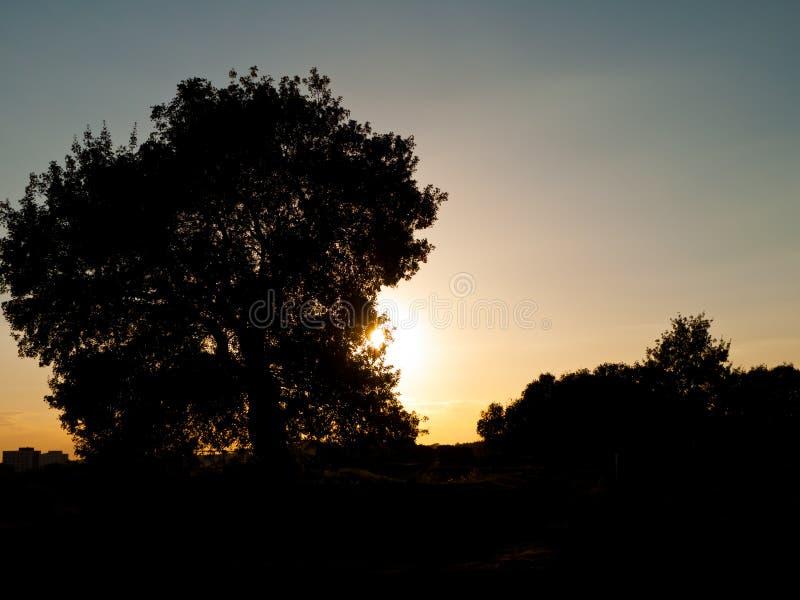 Zonsondergang, Halle, Duitsland stock foto's