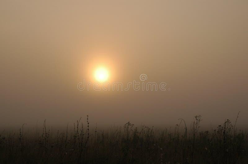 Zonsondergang in het land stock afbeelding