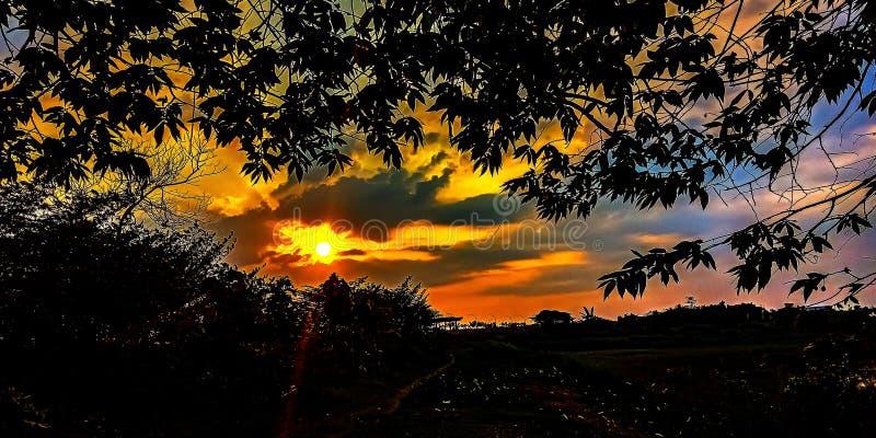 Zonsondergang in het moeras royalty-vrije stock foto