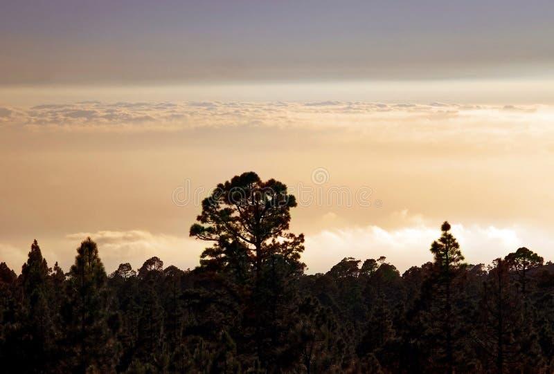 Zonsondergang in het Nationale Park Teide stock foto's