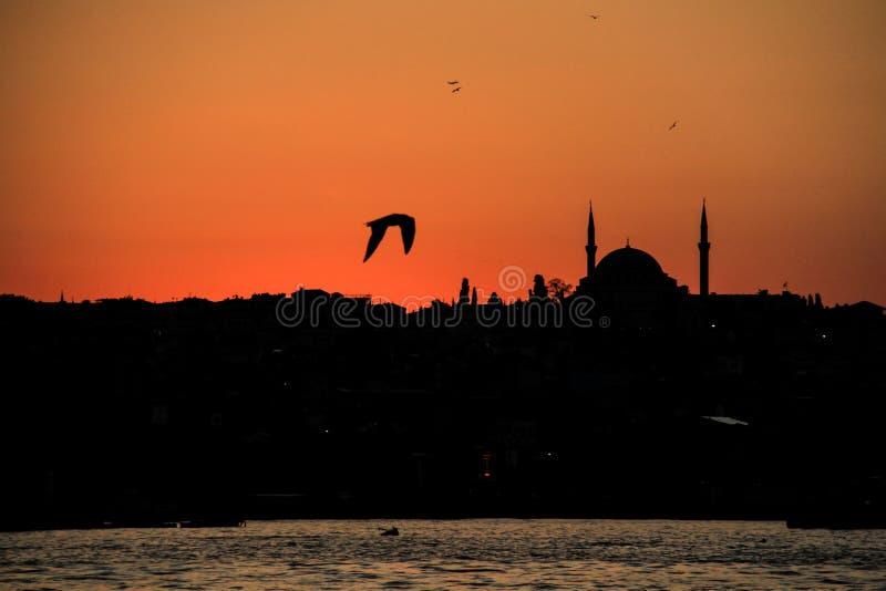 Zonsondergang in Istanboel stock fotografie