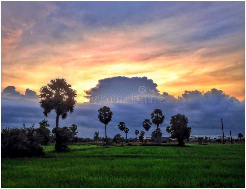 Zonsondergang in Kambodja royalty-vrije stock foto's