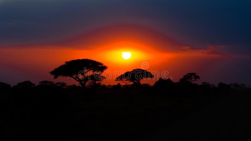 Zonsondergang in Kenia royalty-vrije stock afbeeldingen