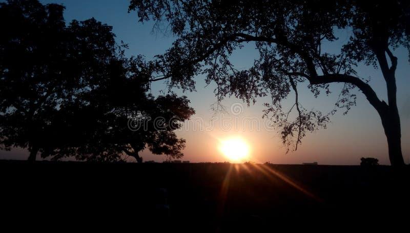 Zonsondergang in landbouwbedrijf stock foto