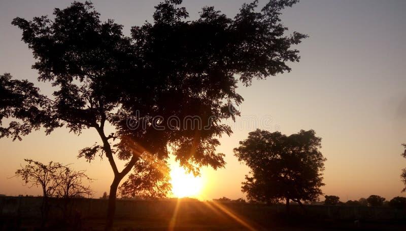 Zonsondergang in landbouwbedrijf stock foto's