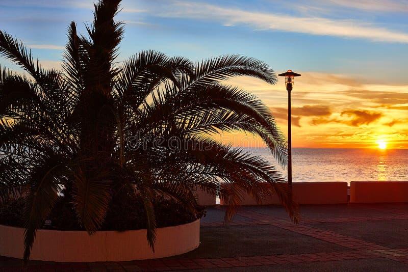 Zonsondergang, leeg strand met palm en lantaarn stock afbeeldingen