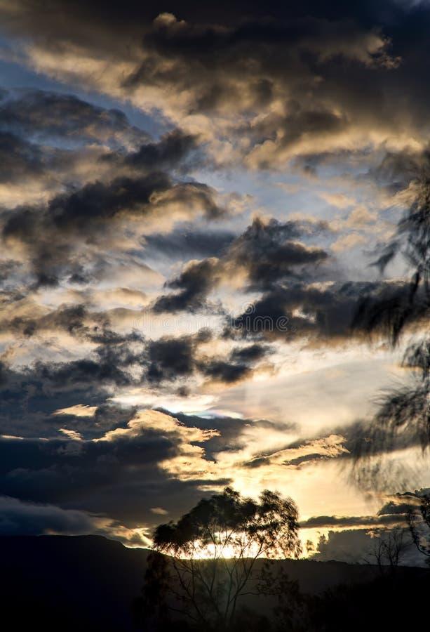 Zonsondergang met de zon achter een boom stock fotografie