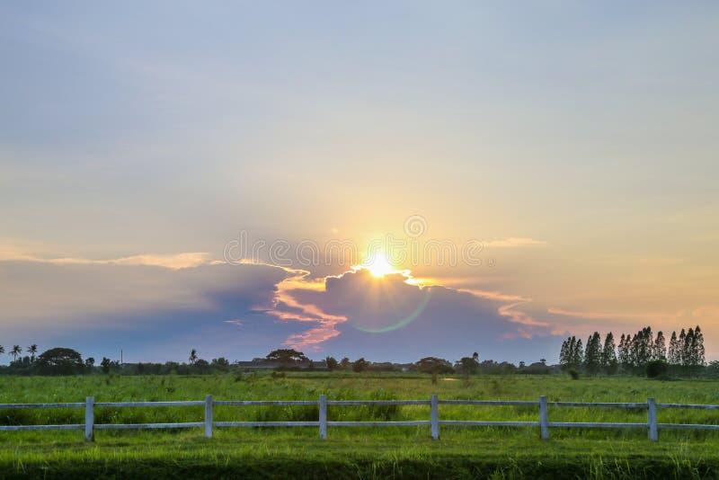 Zonsondergang met groen gebied stock foto's