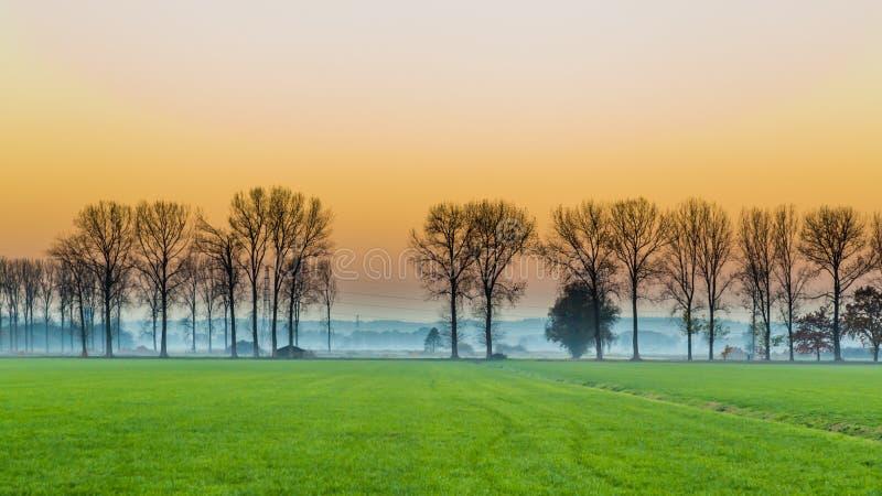 Zonsondergang met landelijk Nederlands gebied stock foto's