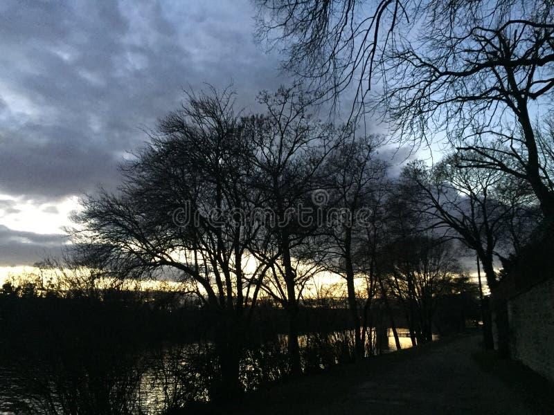 Zonsondergang met naakte bomen en rivier stock afbeelding