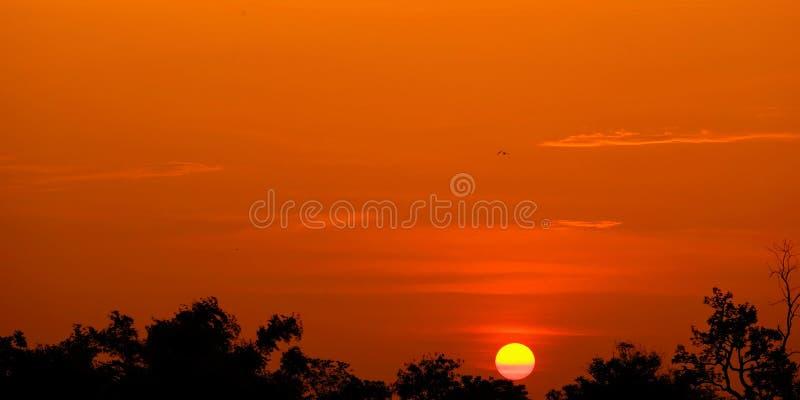 Zonsondergang met oranje elft Gouden hemel, royalty-vrije stock fotografie