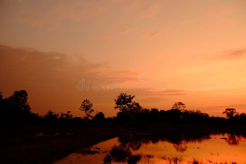 Zonsondergang met oranje elft Gouden hemel, royalty-vrije stock afbeeldingen