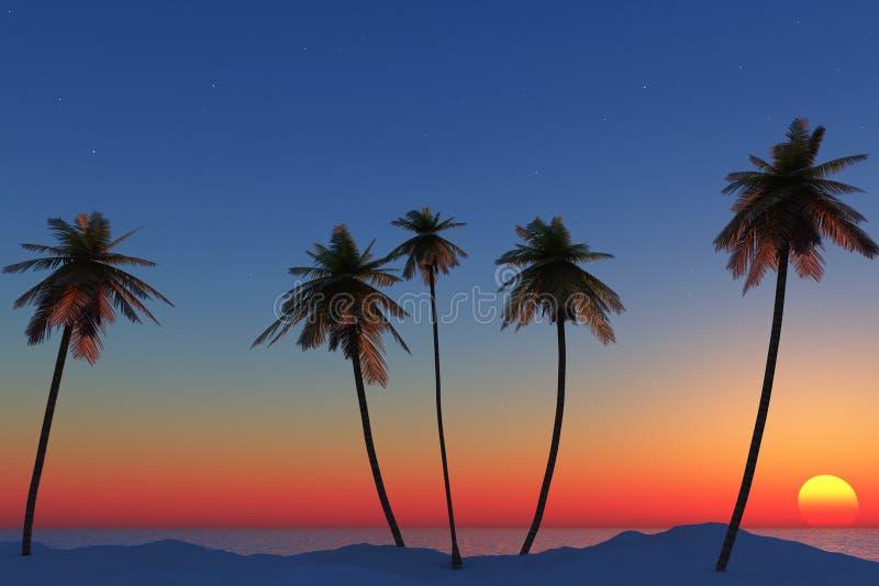 Zonsondergang met palmen stock afbeelding