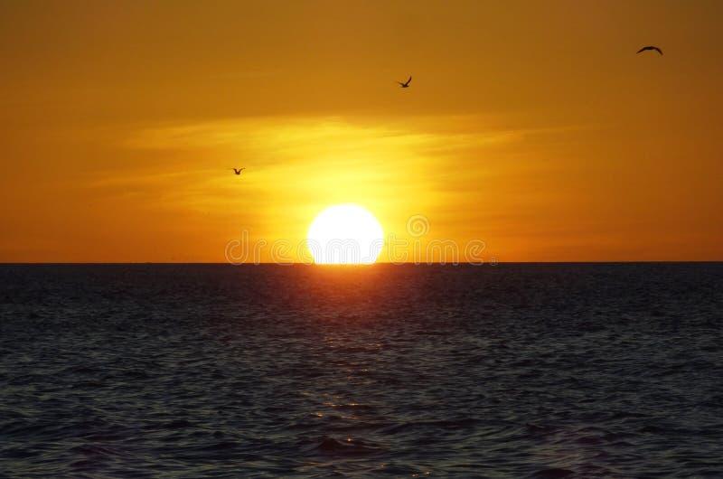 Download Zonsondergang in Mexico stock foto. Afbeelding bestaande uit platteland - 39109002