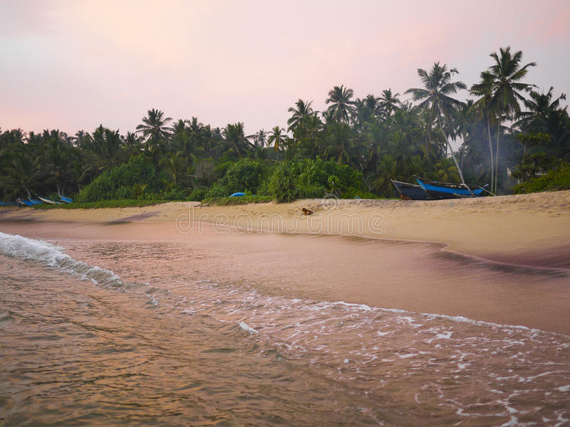 Zonsondergang in Mirissa-strand, Sri Lanka royalty-vrije stock afbeeldingen