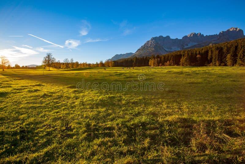 Zonsondergang in mooi landschap Tirol, Oostenrijk De Berg 'Wilder Kaiser 'op de achtergrond royalty-vrije stock foto's