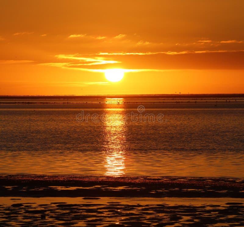 Zonsondergang in Namibi? stock afbeeldingen